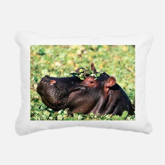 Casanova Hippopotamus Rectangular Canvas Pillow