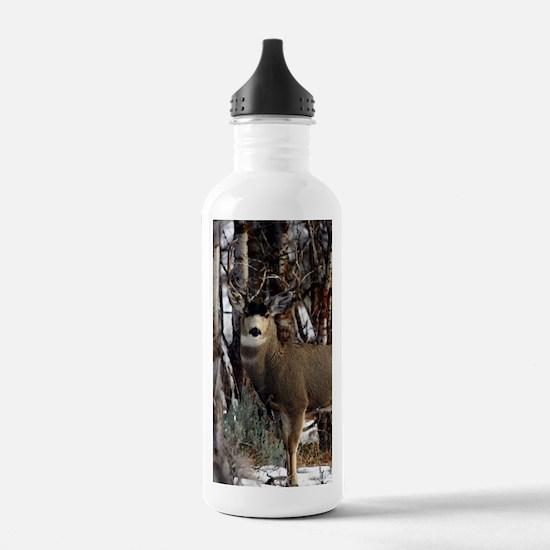 Buck deer Water Bottle