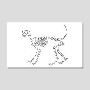 Skelo Cat Car Magnet 20 x 12