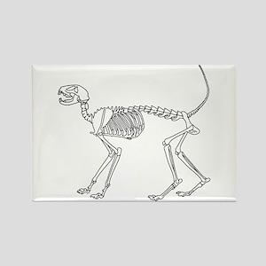 Skelo Cat Rectangle Magnet