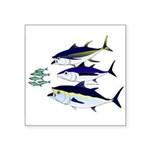 Three Tuna Chase Sardines fish Square Sticker 3
