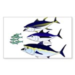 Three Tuna Chase Sardines fish Sticker (Rectangle