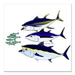 Three Tuna Chase Sardines fish Square Car Magnet 3