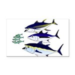 Three Tuna Chase Sardines fish Rectangle Car Magne