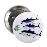 Three Tuna Chase Sardines fish 2.25