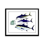 Three Tuna Chase Sardines fish Framed Panel Print