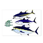 Three Tuna Chase Sardines fish Postcards (Package