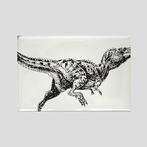 Dinosaur Rectangle Magnet