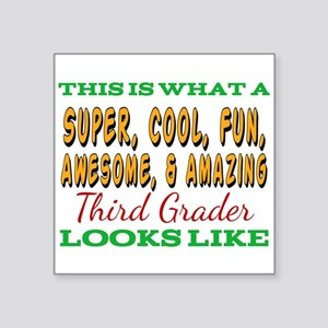 This Is What An Awesome Third Grader Looks Sticker