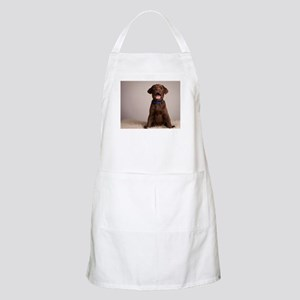 Here's Lookin at You Kid Apron