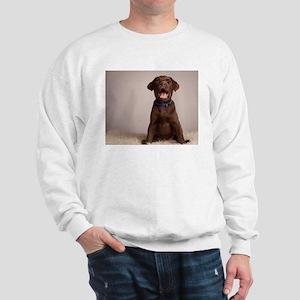 Here's Lookin at You Kid Sweatshirt