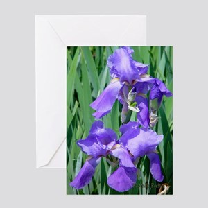 Greeting Card - Blue Iris