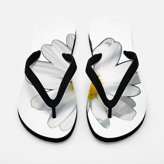 White daisy Flip Flops