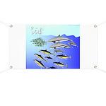 Tuna Birds Dolphins attack sardines Banner