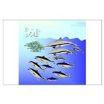 Tuna Birds Dolphins attack sardines Large Poster