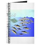 Tuna Birds Dolphins attack sardines Journal