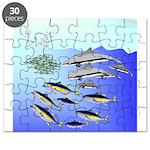 Tuna Birds Dolphins attack sardines Puzzle