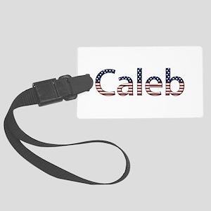 Caleb Stars and Stripes Large Luggage Tag