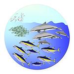 Tuna Birds Dolphins attack sardines Round Car Magn