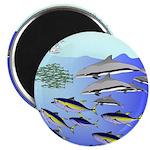 Tuna Birds Dolphins attack sardines Magnet