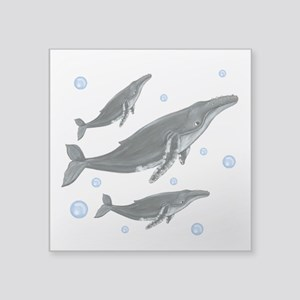 "Humpback Whales Square Sticker 3"" x 3"""