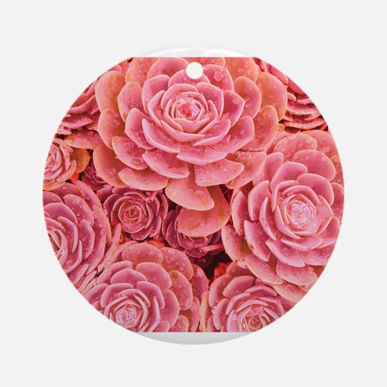 Pink Multiple Succulent Ornament (Round)