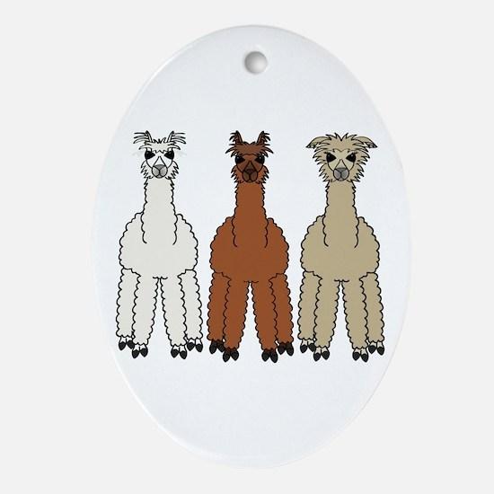 Alpaca (no text) Ornament (Oval)