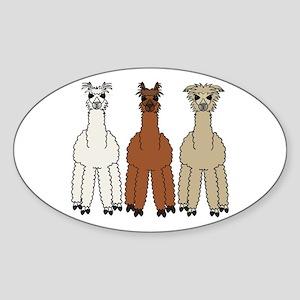 Alpaca (no text) Sticker (Oval)