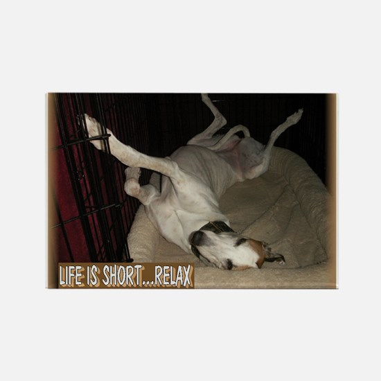 Roaching Greyhound Rectangle Magnet