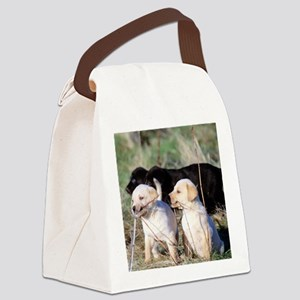 labpuppies Canvas Lunch Bag