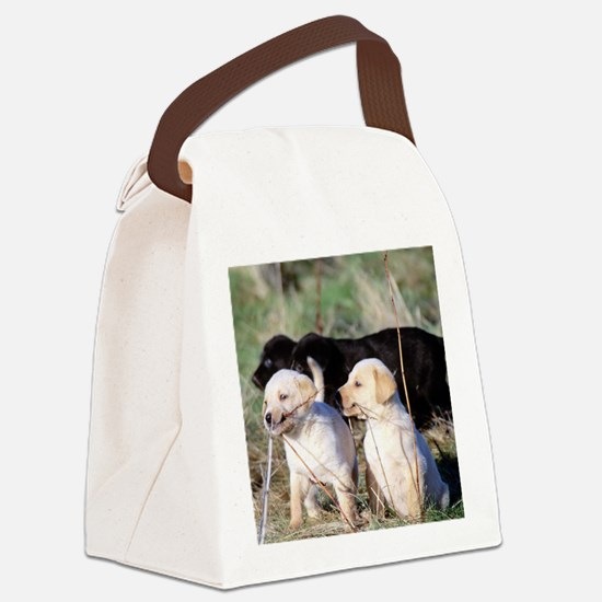 labpuppies.png Canvas Lunch Bag