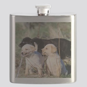labpuppies Flask