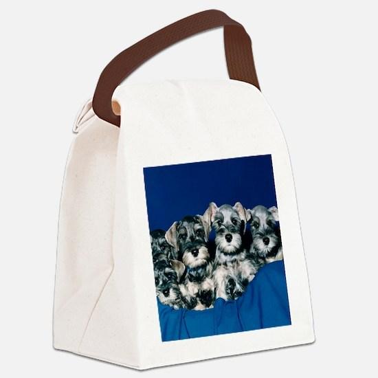 schnauzerpuppytile.png Canvas Lunch Bag
