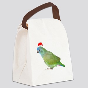 diggiesantahat1 Canvas Lunch Bag