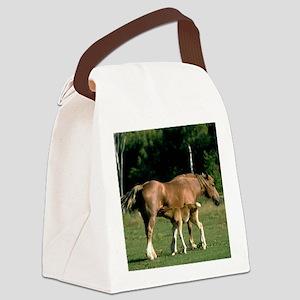 foaltile2 Canvas Lunch Bag
