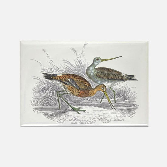 Black Tailed Godwit Rectangle Magnet