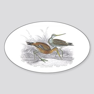 Black Tailed Godwit Oval Sticker