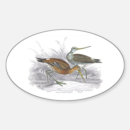 Black Tailed Godwit Oval Decal