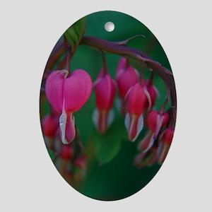 Bleeding Hearts Oval Ornament