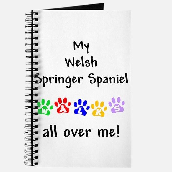Welsh Springer Spaniel Walks Journal