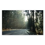 A Drive in the Park Sticker (Rectangle 10 pk)