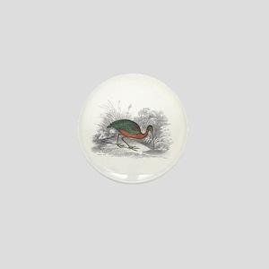 Glossy Ibis Bird Mini Button