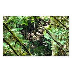 forest light Sticker (Rectangle 10 pk)