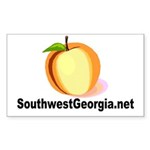 SouthwestGeorgia.net Sticker (Rectangle 10 pk)
