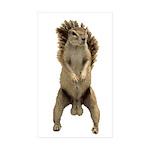 Nutsac Dance Squirrel Sticker (Rectangle 10 pk)
