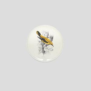 Golden Oriole Bird Mini Button