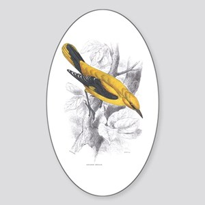 Golden Oriole Bird Oval Sticker