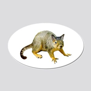 Cat Squirrel 20x12 Oval Wall Decal