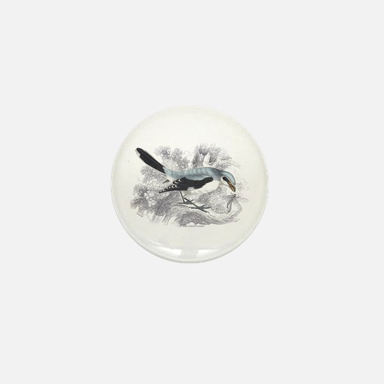 Great Cinereous Shrike Bird Mini Button