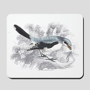 Great Cinereous Shrike Bird Mousepad